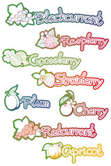 set of labels for fruit jam