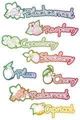 set of labels for fruit jam