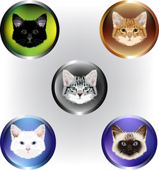 Set of Five Vector Cat Faces
