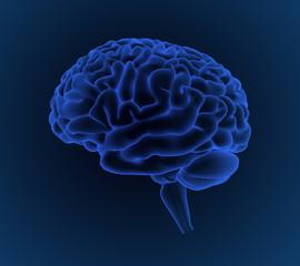 Cerebro azul