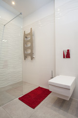 Cloudy home - toilet and shower