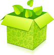 Green vector gift box with flying foliage inside