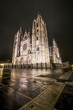 Night shot of the Cathedral of Leon in a foggy day, Spain