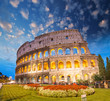 Colosseum - Rome. Night view with surrounding grass and park