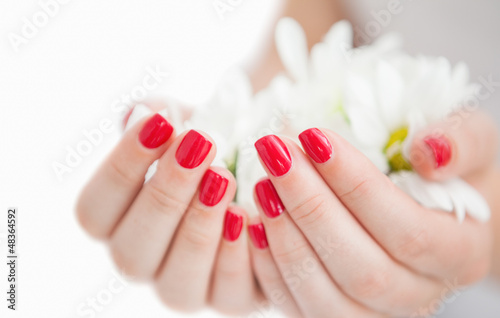 Manicured hands holding flowers