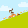 Bunny In Meadow Driving Car Easter Eggs Downhill