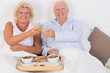 Smiling aged couple toasting