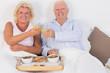 Smiling aged couple toasting
