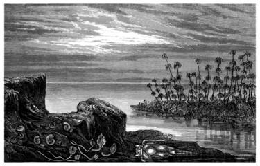 Prehistory : Landscape (Devonian)