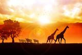 Fototapete Tier - Kunst - Naturlandschaft