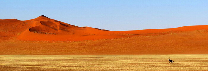 Panorama Namib Desert