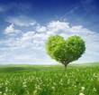 Leinwanddruck Bild - Tree in the shape of heart, valentines day background,