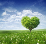 Tree in the shape of heart, valentines day background, - Fine Art prints