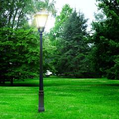 flashlight to illuminate the park
