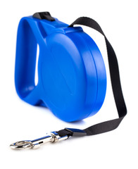 Blue retractable leash for dog
