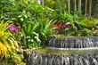 Fototapeten,singapur,orchid,botanisch,gärten