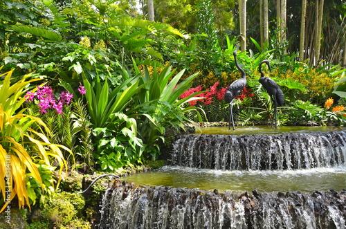 Fotobehang Singapore Singapore Botanic Gardens