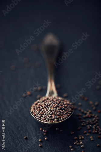 Black mustard seeds on a spoon