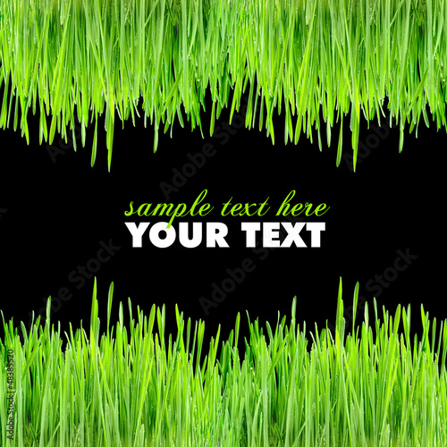 Frame is from a green grass on a black background