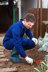Young man planting garlic