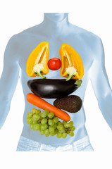 anatomy with vegetables and fruits