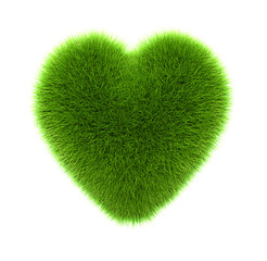 green grass heart, isolated on white