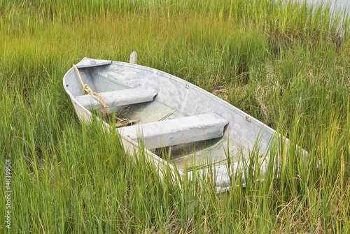 Boat in the Grass