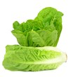 Two heads of lettuce on a white background