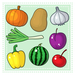 Fruits & Vegetables 04