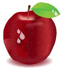 Vektor Apfel Gala