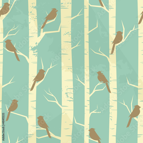 Foto op Canvas Vogels in het bos Vintage Birch Pattern