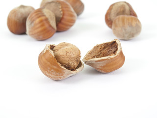 the broken nut of a leshchina