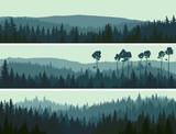 Fototapety Horizontal banners of hills coniferous wood.