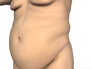 Fat belly on a white background №1
