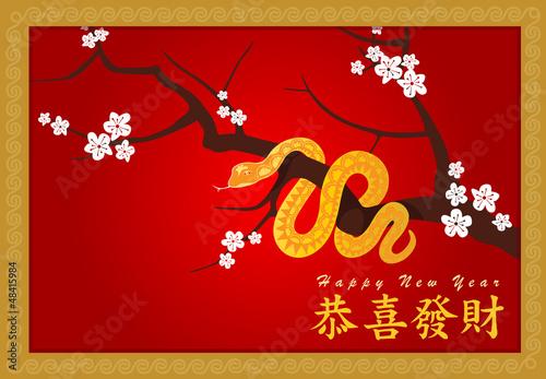 Happy New Year (Gong Xi Fa Cai)