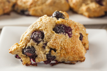 Fresh Homemade Blueberry Breakfast Scones