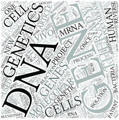 Molecular genetics Disciplines Concept