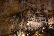 Grotta Gigante - Giant Cave, Sgonico. Trieste