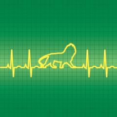 EKG Lion heartbeat apttern