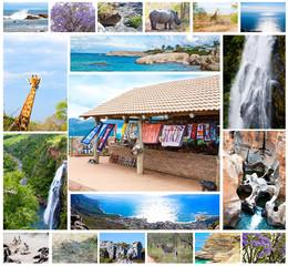wild animals collage, fauna in South Africa, adventure, travel