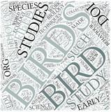 Ornithology Disciplines Concept poster