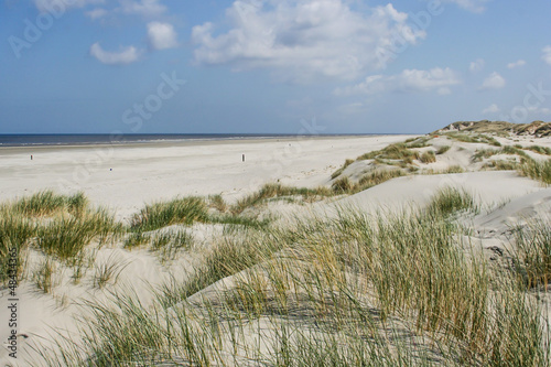 Sand dunes at the coast of the Netherlands