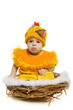 Baby sitting in nest in chicken costume. Easter holiday concept.