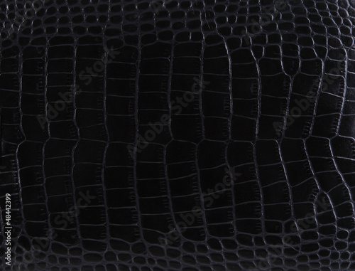Texture of a crocodile leather
