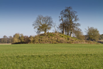 Tree covered neolithic burial mound