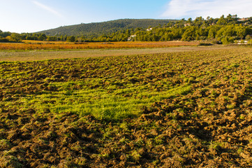 Plowed field in Provence