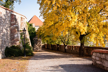 Bratislava Castle road