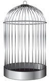 Cylindrical cage for birds
