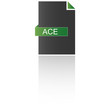 Dateityp ACE