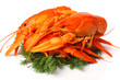 Group of red lobsters with garnish isolated